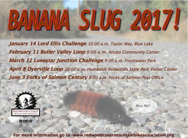 banana-slug-2017